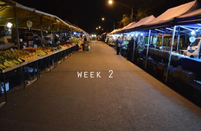 blog 5